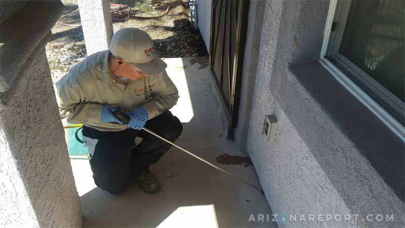 Treating a Home for Termites in Phoenix