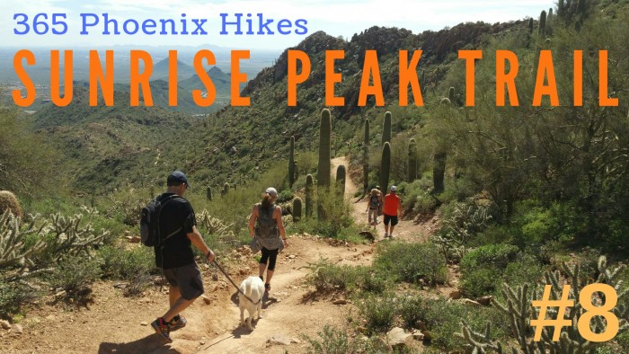 Sunrise Peak Trail McDowell Sonoran Preserve hiking best hike Scottsdale Fountain Hills