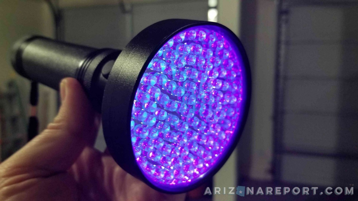 blacklight flashlight black light scorpion hunting find