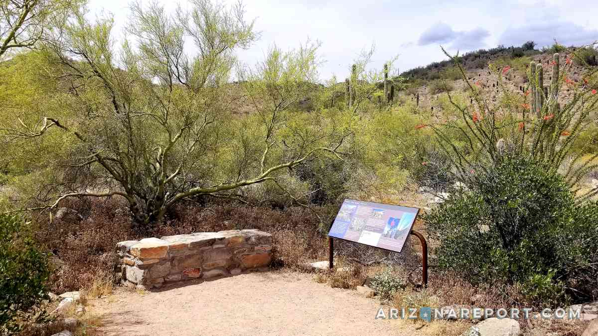 Best Scottsdale hike handicap kids Kovach Family Nature Trail McDowell Sonoran Preserve disabled easy
